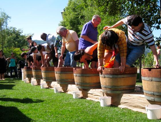 Picnic and Petanque Garden Party (2)